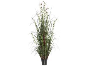 Vickerman TN170248 48 in. Eucalyptus Grass Potted