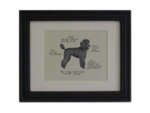 Clapper Hollow HC84 Poodle Puppy Black Framed Print