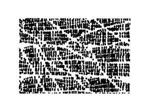 "21"" x 30"" Black and White Decorative Afton Design Area Rug"