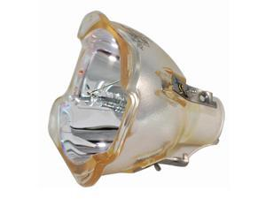 Acer EC.JC300.001 Projector Brand New High Quality Original Projector Bulb