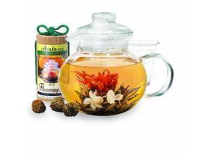 Primula PTA-4002 DST Flowering Tea Gift Set (40 oz Teapot, Glass Infuser, and Lid with Canister of 12 Flowering Teas)