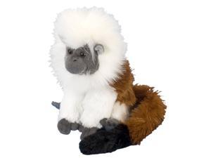 4229a9155a52 Mini Cottontop Tamarin Cuddlekin 8