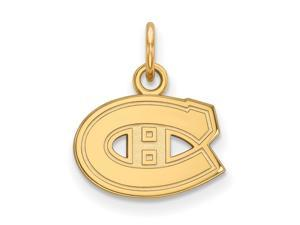 14k Yellow Gold NHL Montreal Canadiens XS Charm or Pendant