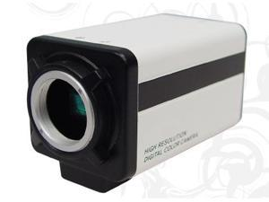 "620TV Lines 1/3"" SONY SUPER HAD CCD II WDR Day&Night 12V DC Standard Box Camera"