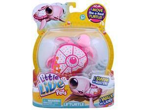 little live pets turtle  sundae