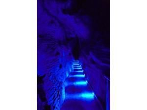 Blue Lights, Ruakuri Caves, North Island, New Zealand Poster Print by David Wall (11 x 17)
