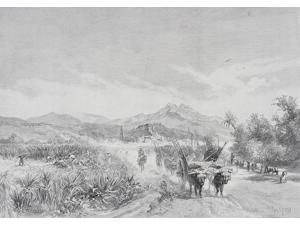 Malaga Spain From The Sugar Fields By Edward T Compton (1849-1921) From The Picturesque Mediterranean Circa 1890 Poster Print (17 x 12)