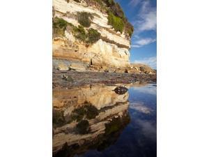 Cliffs of Fossil Bluff, Wynyard, NW Tasmania, Australia Poster Print by David Wall (24 x 36)