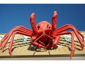 Crustacean, Giant Lobster, Stanley, Tasmania, Australia Poster Print by David Wall (36 x 24)