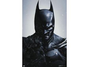 Batman Arkham Origins Poster Print (24 x 36)