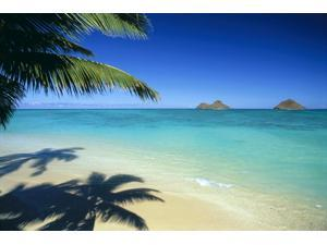 Hawaii Oahu Lanikai Beach With Calm Turquoise Water Mokulua Islands Background Palm Fronds And Shadow Foreground Poster Print (19 x 12)