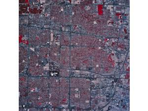 Satellite view of Albuquerque, New Mexico Poster Print (13 x 13)