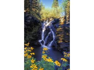 Waterfall Kootenays British Columbia Canada Poster Print (11 x 17)
