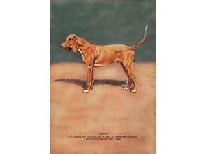 Illustration of a champion show dog Poster Print by Baron Karl Reille (18 x 24)