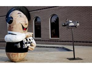 Dothan Alabama Peanut Capital of the World The peanuts located all over town depict various forms of peanuts Poster Print by Carol Highsmith (18 x 24)
