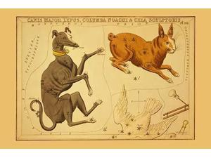 Astronomical chart showing a dog a rabbit Noahs dove and sculpting tools forming the constellations Poster Print by Aspin Jehosaphat (18 x 24)