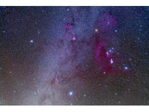 Orion and Canis Major showing dog stars Sirius and Procyon Poster Print (17 x 11)