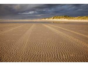 Sand Ripples, Beach, Tasmania, Australia Poster Print by David Wall (36 x 24)