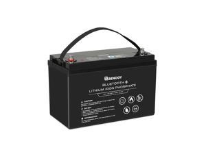 Renogy 12V 100Ah Lithium Iron Phosphate Battery with Bluetooth