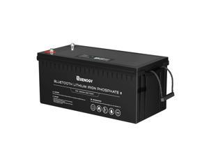 Renogy 12V 200Ah Lithium Iron Phosphate Battery with Bluetooth