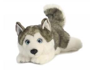 "Aurora - Miyoni Cuddly - 11"" Husky Lying"