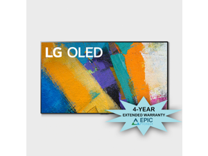"LG OLED65GXP 65"" 4K OLED Gallery Design Smart Smart TV with Additional Four Year Coverage by Epic Protect Bundle (2020)"