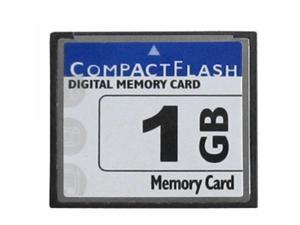 NEW 1GB CF CompactFlash CF Memory Card 1 GB Standard cf card 1GB W/Case by MicroData