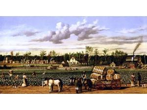 "William Aiken Walker Plantation Economy - 14"" x 28"" Premium Canvas Print"