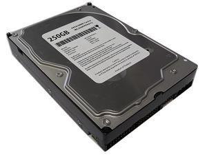 "WL 250GB 7200RPM 8MB Cache ATA/100 IDE PATA 3.5"" Internal Desktop Hard Drive -1 Year Warranty"