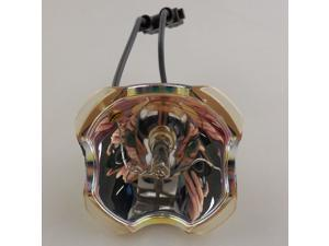 OEM Original Projector Bare Bulb/Lamp for VIEWSONIC RLC-038/RLC038/PJ1173 / X95 / X95i