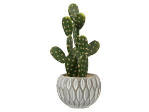 "10"" Green Potted Cactus (Set/3 Asst)"