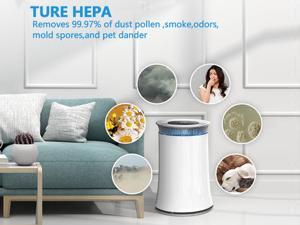 ELECSHELL High CADR Air Purifier for Large Rooms to 376ft², Fast Purification Air Purifier for Home, True HEPA Filter Air Cleaner, Effective for Pollen, Smoke, Dust, Pet Dander, Quiet with Night Light