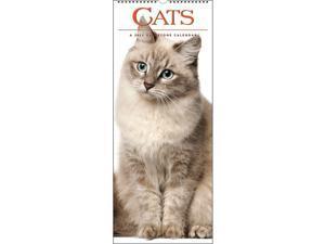 Gladstone Media,  Cats 2022 Wall Calendar