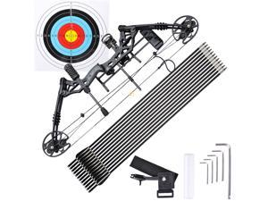 Pro Compound Right Hand Bow Kit w/ Arrow Adjustable 20 - 70lbs Archery Set Black