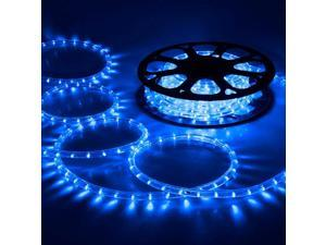 DELight™ 50 Ft 2 Wire LED Rope Light Holiday Valentine Party Decorative Lighting Blue