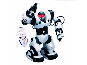 TT323 X5 RC robot Robosapien Huminoid Walking Toy Robot with Remote Control