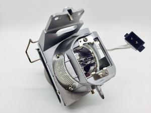 Optoma BL-FP240E Projector Lamp