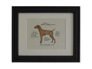 Clapper Hollow HC101 Vizsla Framed Print