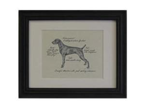 Clapper Hollow HC102 Weimaraner Framed Print
