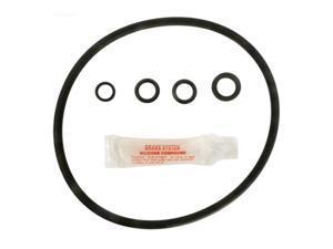 Apc GO-KIT55 Cl200 Chlorinator O-Ring Kit