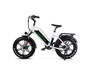Addmotor Electric Bike for Adult, 20'' Electric Mountain Bike Step Thru 750W City Commuter Snow Beach M-50 Ebike with Removable 48V 16Ah Lithium Battery, Throttle & Pedal Assist, Black