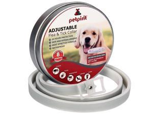 Petpirit Flea and Tick Adjustable Prevention Collar for Dogs, 8 Months Protection, One Size Fits All