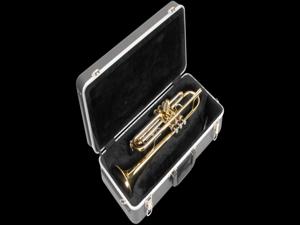 skb trumpet rectangular case