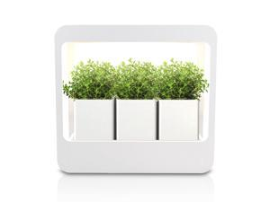 GrowLED Plant Grow Light LED Indoor Garden Plus, Kitchen Garden with Timer Function, 24V Low Safe Voltage, Ideal for Plant Grow Novice Or Enthusiasts, Various Plants, DIY Decoration, White Grow Light
