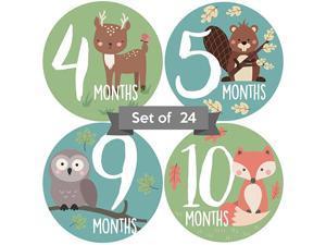 Monthly Stickers | Woodland Creatures Milestone Stickers | Newborn Boy or Girl Animal Stickers | Month Stickers for Boy | Gender Neutral | Unisex Monthly Milestone Stickers Set of 24