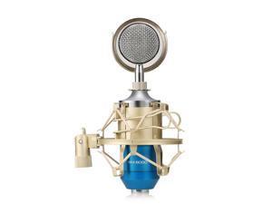 LEIHAO BM - 8000 Professional Sound Studio Recording Condenser Microphone