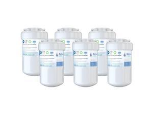 Refresh Replacement Water Filter 2 Pack Fits GE DSHS6VGBBCSS Refrigerators