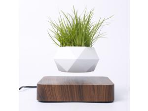 Levitating Air Plant Pot Bonsai Suspension Floating Flower Pot Deep
