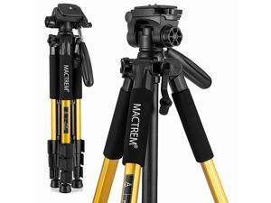 PT55 Travel Camera Tripod Lightweight Aluminum for DSLR SLR Canon Nikon Sony Olympus DV with Carry Bag 11 lbs5kg Load Gold 1