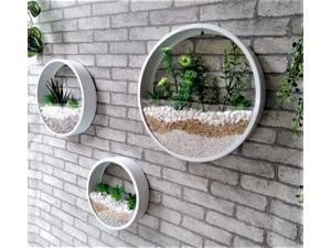 Pack of 3 White Round Wall Hanging Plant Terrarium Iron Planter Wall Hanging Container Succulent Plant Pots in Mixed Size